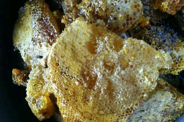 [蜂蜜資訊] 野生蜂蜜保質期有多久?