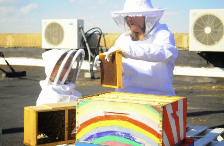 AUTUMN SCHOEN:養蜂人、教育家、母親